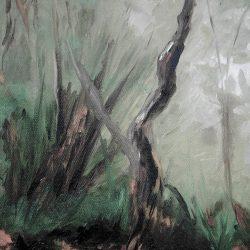 Fiordland Misty