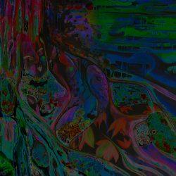 Delightfalls Psychedelic Smooching